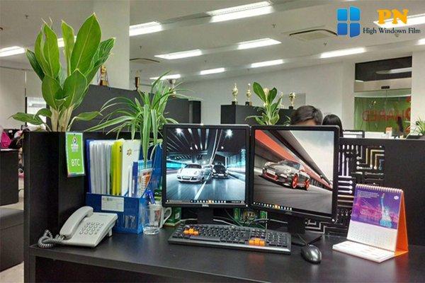 Trang trí góc làm việc công sở bằng cây xanh